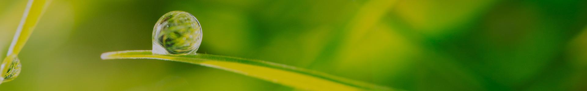 Servizi ambientali Varese